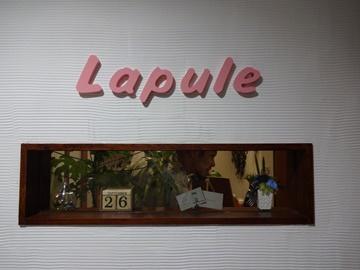 Lapule6.JPG